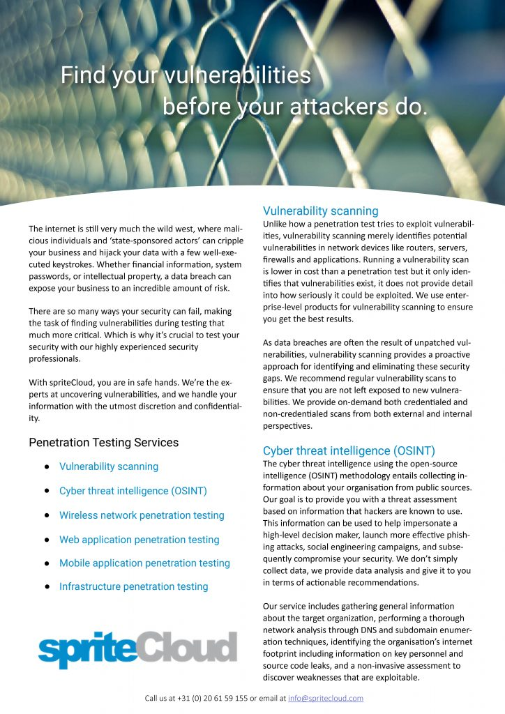 Security Testing Services Brochure