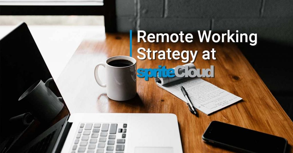 Remote Working Strategy