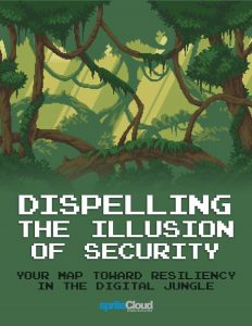 Dispelling the Illusion of Security