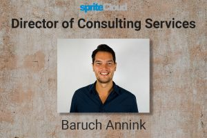 Baruch Annink, Director of Consulting Service